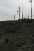 PCTWindmills_21