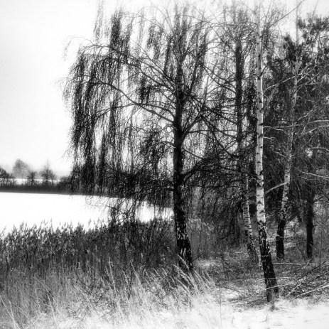 northern_exposure_06