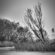 northern_exposure_15