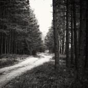 schwarz-weiß-welt_01