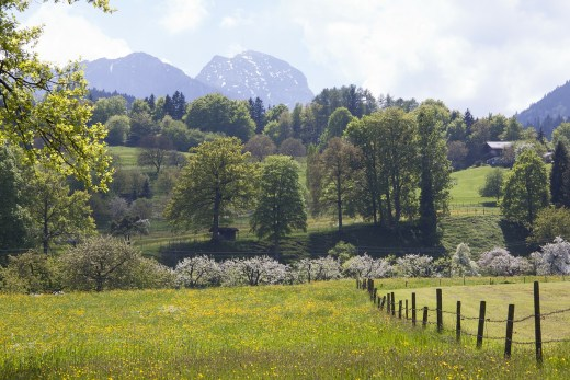 A photograph of a lovely spring landscape