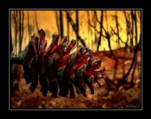 istorija-apie_medžius
