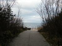 kelias prie jūros Agnusyte Foto