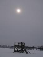 lieptelis saulėn Agnusyte2010