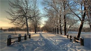 žiemos pėdsakai