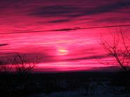 saulėlydis_Agnusyte2010