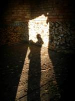 šešėlis_Agnusyte_foto