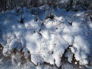 sniego_patalai_Agnusyte2010