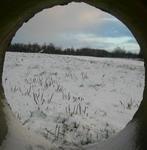 žiema_pro_ritinį_Agnusyte_foto