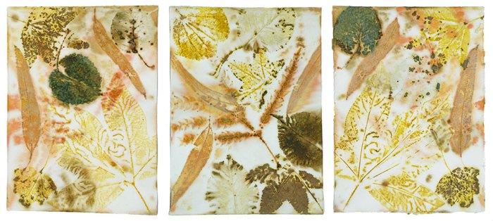 Cassandra Tondro Leaf Prints
