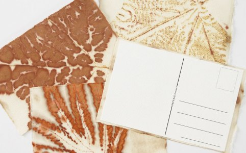Leaf Print Postcard DIY Project