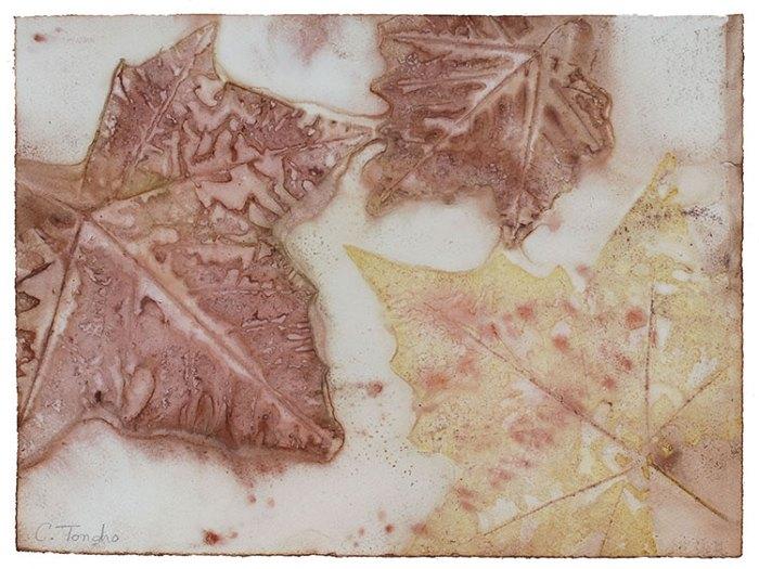 Cassandra Tondro, sycamore leaf print