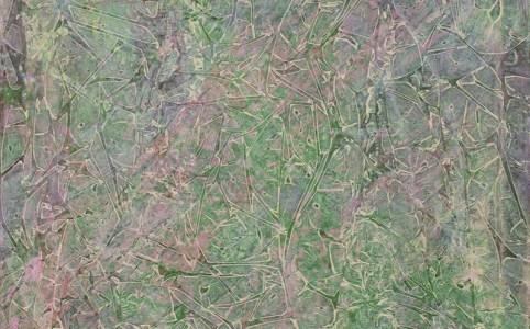 "Cassandra Tondro, ""Cellular Level,"" abstract painting"