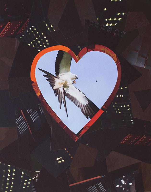 """Cassandra Tondro, """"Spirit Bird,"""" collage art"""