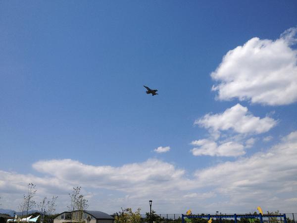 引地川公園ゆとりの森 上空の自衛隊機