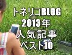 トネリコBLOGの2013年人気記事ベスト10