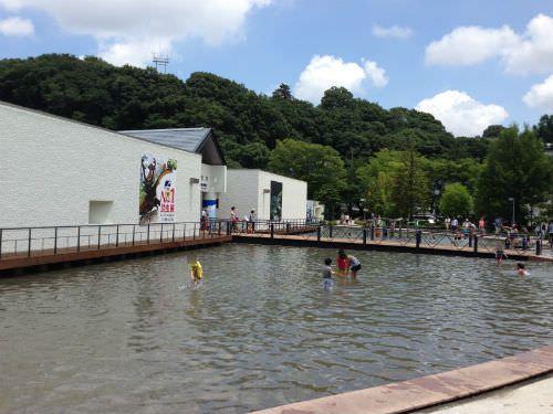 相模川ふれあい科学館 水遊び