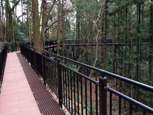 あつぎこどもの森公園 森の空中回廊