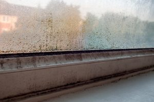 condensation-on-window