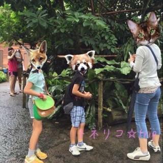 Der Zoo von Singapur Tamarine