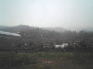 first_snow_in_2003_1.jpg