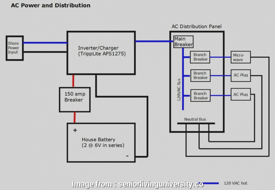 1 Light 2 Switch Wiring Diagram Professional 6In Switch
