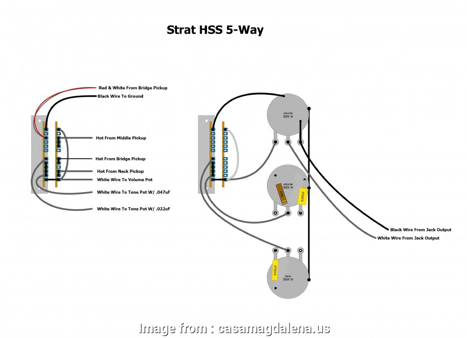 2 Humbucker 5-Way Super Switch Wiring Professional Way