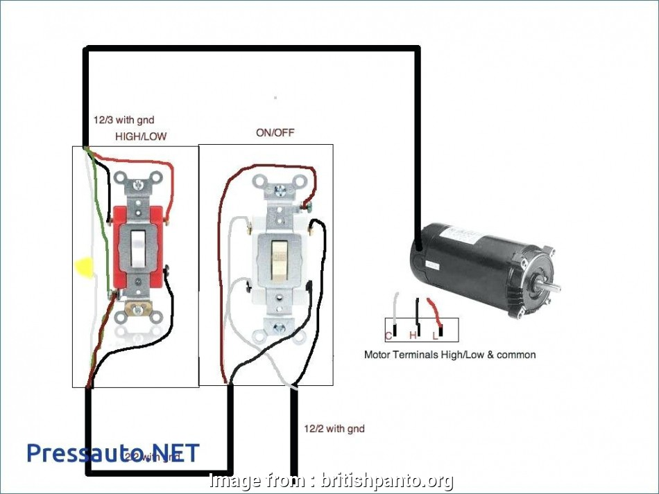 carling technologies rocker switch wiring diagram  auto