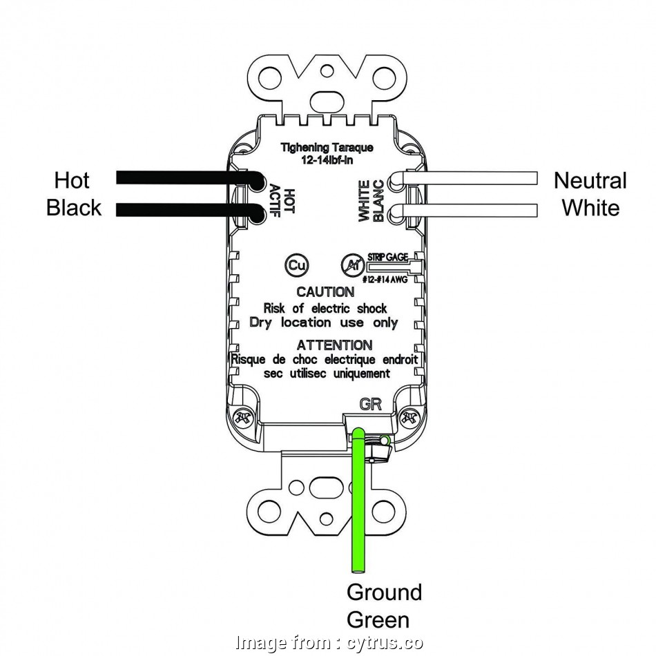 Electrical Outlet Wiring Types Professional New Duplex