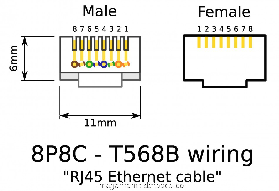 Ethernet Wiring Diagram T568A Nice Ethernet Wiring Diagram