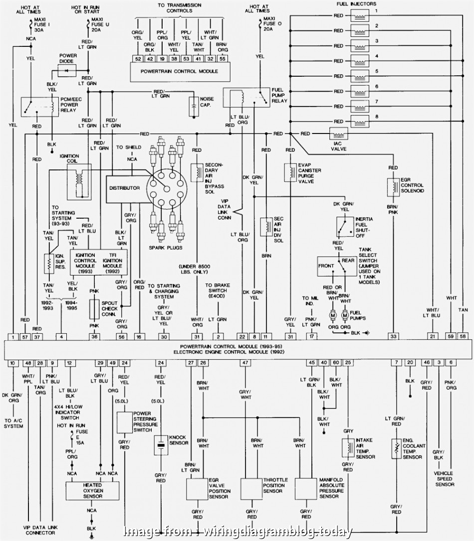 Ford F650 Starter Wiring Diagram Nice 1996 Ford F, Wiring