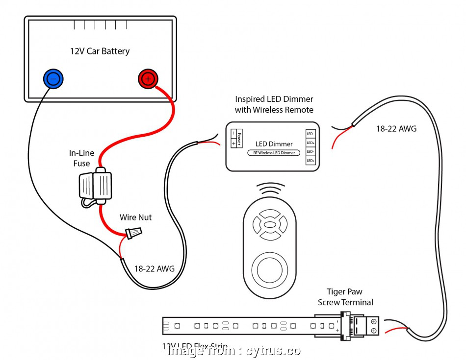 How To Wire A Light Switch Diagram Professional Fog Light