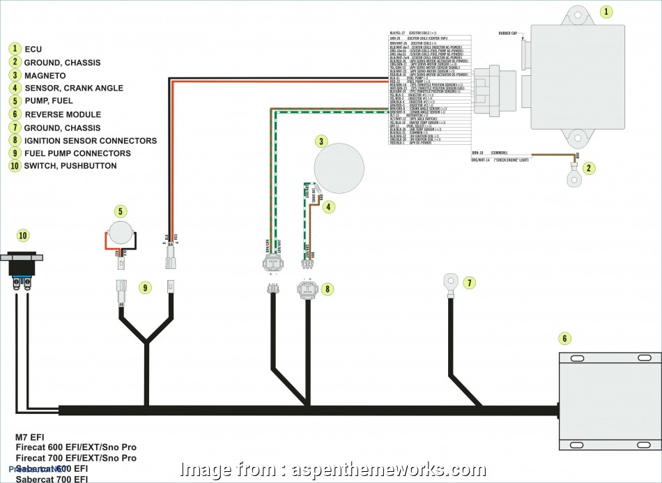 How To Wire, Way Momentary Switch Best Wiring Diagram