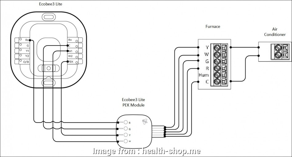 Nest Wiring Diagram System Boiler Top Nest Thermostat
