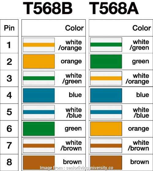 small resolution of rj45 jack wiring diagram cat 3 wiring diagram with rj45 on images free download within