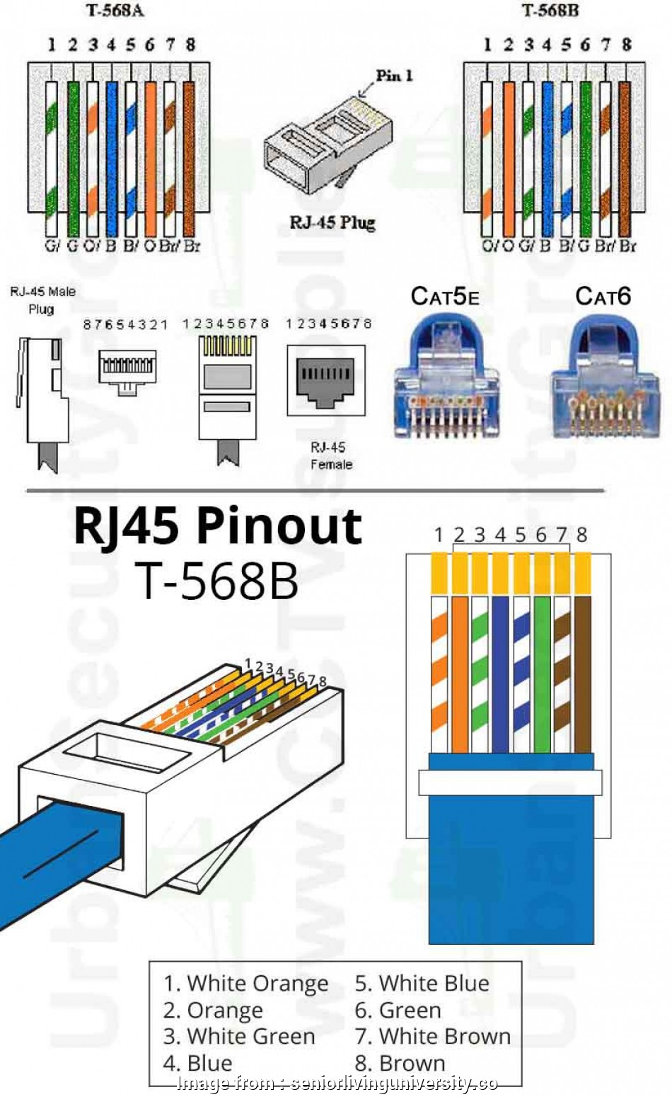 hight resolution of rj45 jack wiring diagram cat prong wiring diagram trusted wiring diagram u2022 rh soulmatestyle co