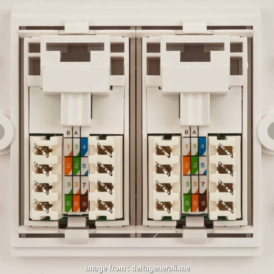 hight resolution of rj45 wall plug wiring diagram how to wire an ethernet wall socket tech advisor cat5e