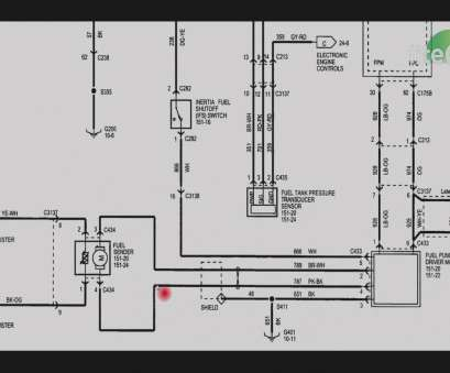 13 Professional 220V Light Switch Wiring Diagram Images