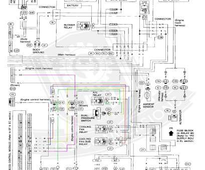 Honeywell Thermostat Rth230B Wiring Diagram Professional