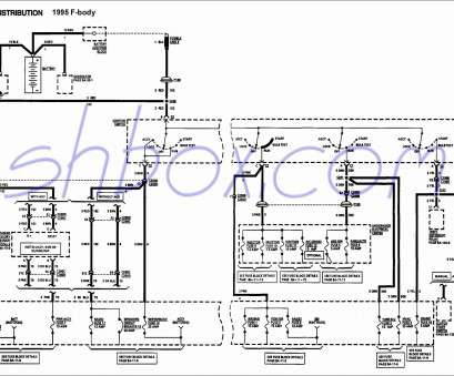 Havells, Starter Wiring Diagram Perfect How Do I Connect A