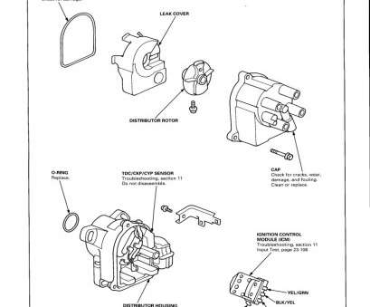 95 Civic Starter Wiring Diagram Top 2010 Honda Accord