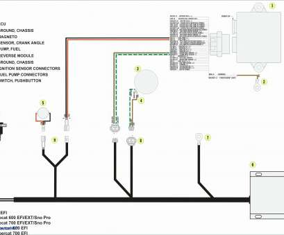 Single Doorbell Wiring Diagram : Wiring Diagrams for