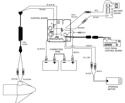 Wiring Diagram Database: Mustang O2 Sensor Wiring Diagram