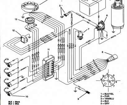 Mercury Outboard Wiring Diagram Popular Evinrude Ignition