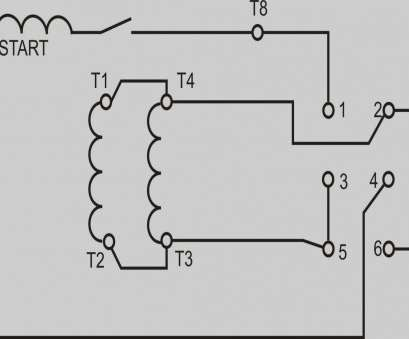 Msd, Pn 6425 Wiring Diagram Creative Chevy, Wiring With