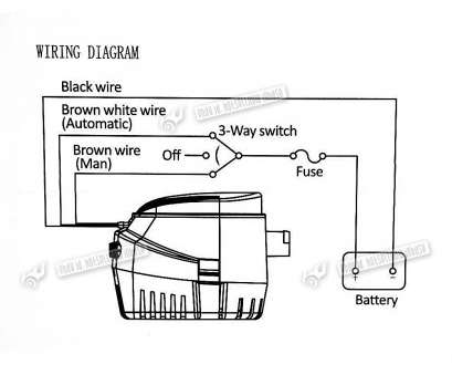 automatic bilge pump wiring diagram 2002 isuzu trooper radio manual all data 10 top toggle switch collections tone tastic auto