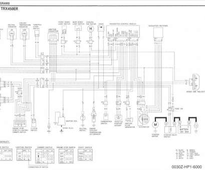 11 Nice Yamaha Raptor, Starter Wiring Diagram Galleries