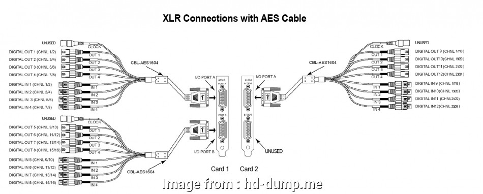 Xlr To Rj45 Wiring Diagram Professional Mini, Wiring