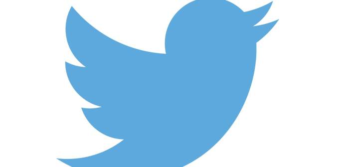 Twitter Logo Blue Bird