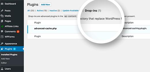 archivo advanced-cache.php que aparece como desplegable
